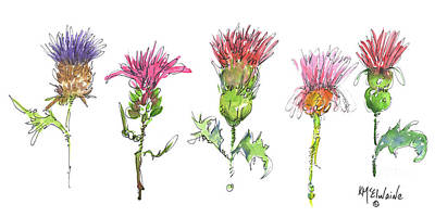 Painting - What Is It About A Thistle Fl006 by Kathleen McElwaine