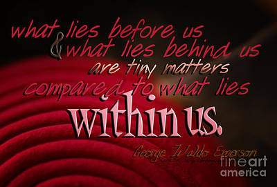 Emerson Digital Art - What Lies Within Us by Vicki Ferrari