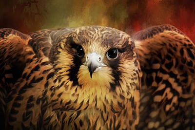 Painting - What Matters - Falcon Art by Jordan Blackstone