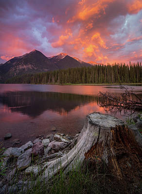 Photograph - What Remains // Holland Lake, Montana  by Nicholas Parker
