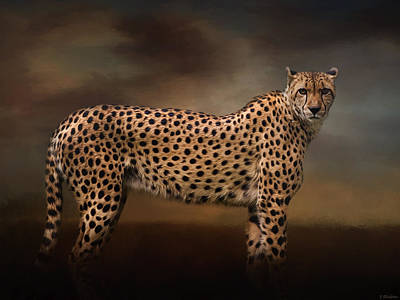 Fauna Painting - What You Imagine - Cheetah Art by Jordan Blackstone