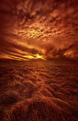 Photograph - What You Need Is In Your Soul by Phil Koch