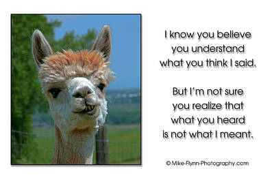 Photograph - What You Think I Said by Mike Flynn