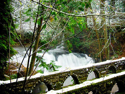 Whatcom Falls 3 Art Print