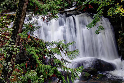 Photograph - Whatcom Falls Cascade by Rick Lawler