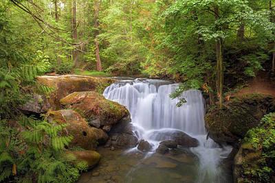 Photograph - Whatcom Falls by David Gn