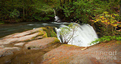 Photograph - Whatcom Falls by Idaho Scenic Images Linda Lantzy