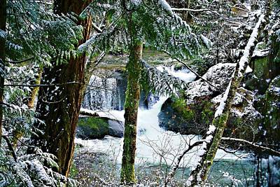 Photograph - Whatcom Falls In Winter by Craig Perry-Ollila