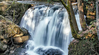 Photograph - Whatcom Falls by Tony Locke
