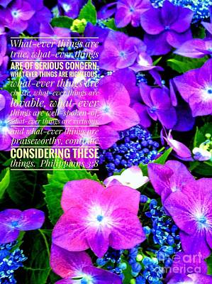 Photograph - Whatever Things Are True Hydrangeas  by Joan-Violet Stretch