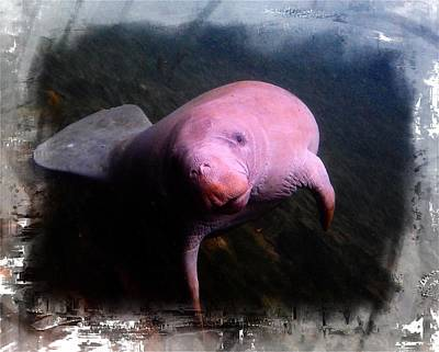 Digital Art - Whats Up Manatee by Sheri McLeroy