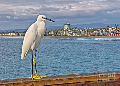 Photograph - What's Up On The Pier by Gabriele Pomykaj