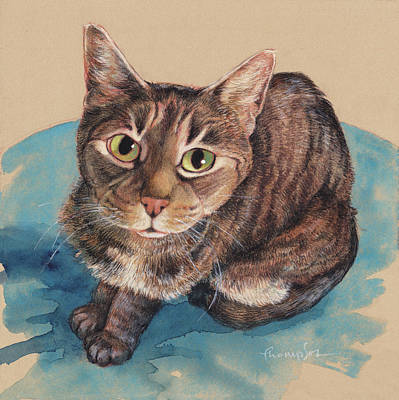 Tabby Painting - What's Up? by Tracie Thompson