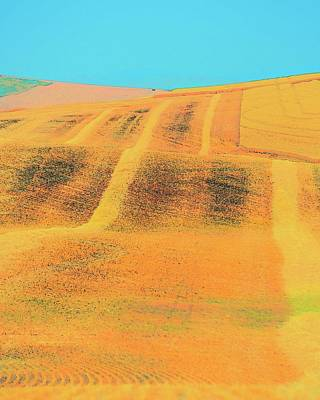 Photograph - Wheat And Straw Lines by Jerry Sodorff