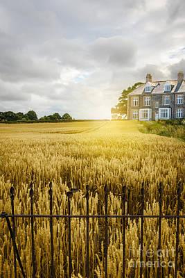 Metal Fence Photograph - Wheat Field by Amanda Elwell
