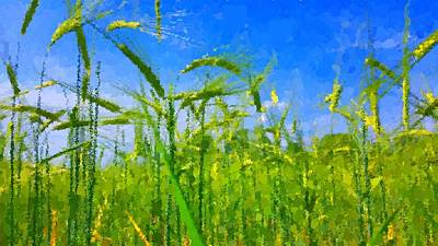 Painting - Wheat Field by Samuel Majcen
