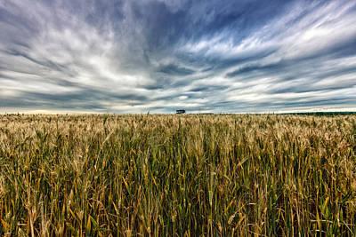 Wheat Field Art Print by Stelios Kleanthous
