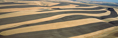 Wheat Fields And Contour Farming, S.e Print by Panoramic Images