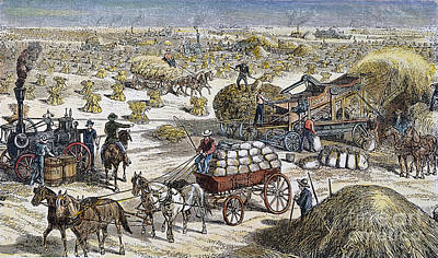 Wheat Thresher, 1878 Art Print by Granger