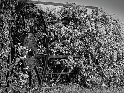 Photograph - Wheel Gate by Keith Elliott