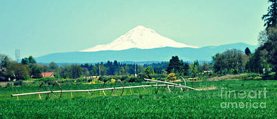 Photograph - Wheel Line And Mt Hood by Mindy Bench