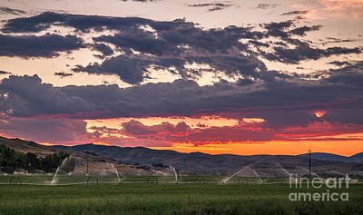 Photograph - Wheel Line Sunrise by Robert Bales