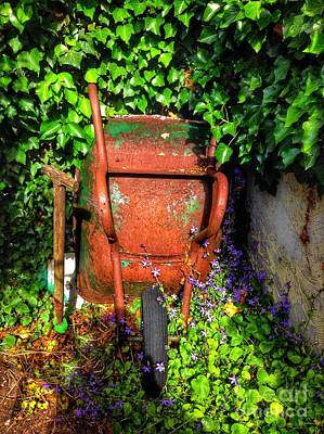 Photograph - Wheelbarrow And Ivy  by Joan-Violet Stretch