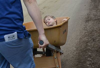Photograph - Wheelbarrow Rescue by Fraida Gutovich