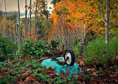 Photograph - Wheelbarrow With A View by Patricia Strand