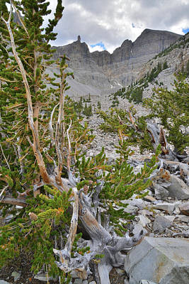 Photograph - Wheeler Peak Glacial Basin by Ray Mathis