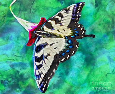 Photograph - When Butterflies Are Free by Nina Silver