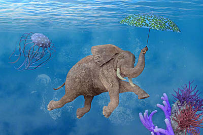 Comics Royalty-Free and Rights-Managed Images - When Elephants Swim by Betsy Knapp