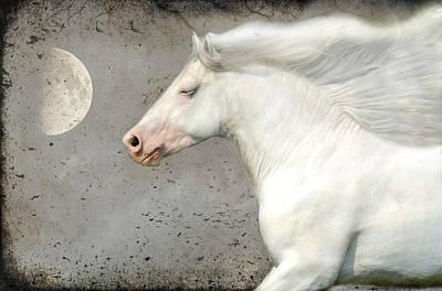 Manip Photograph - When Horses Dream by Fran J Scott