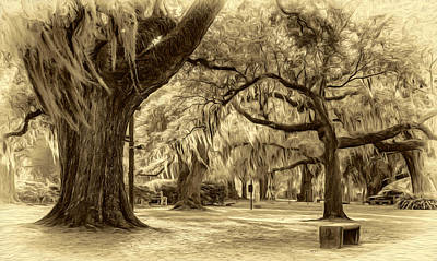Oaks Photograph - When I Dream... 2 - Sepia by Steve Harrington