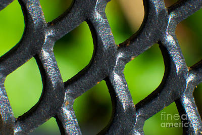 Photograph - When Iron Meets Nature Abstract By Claudia Ellis by Claudia Ellis