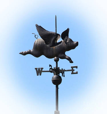 When Pigs Fly I Art Print