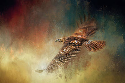 Painting - When The Redtail Flies At Sunset 2 by Jai Johnson