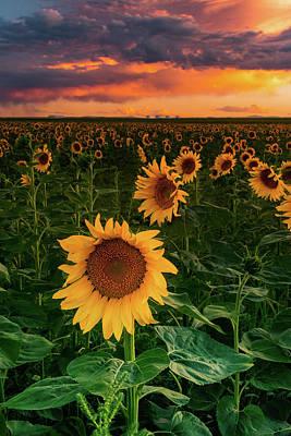 Photograph - When The Sky Sings by John De Bord