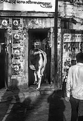 Urinal Photograph - When Ya Gotta Go Bw by Steve Harrington