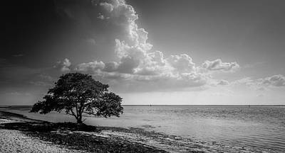 Photograph - When You Are Alone by Marvin Spates