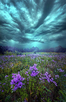 Photograph - When You Can Only Feel The Rain by Phil Koch