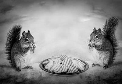 Squirrel Photograph - When You Lose Your Nuts There Is Always Chips by Bob Orsillo