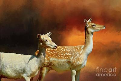Digital Art - Two Deer At Sunset by Janette Boyd
