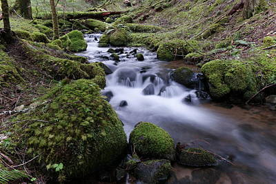 Forest Floor Photograph - Where Serenity Flows by Jeff Swan