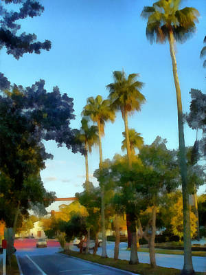 Photograph - Where The Tall Palms Grow by Tawes Dewyngaert