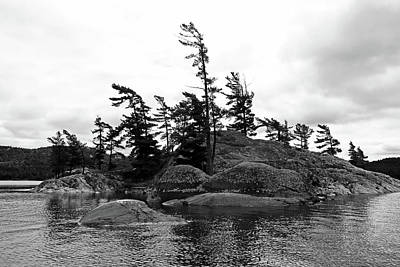 Photograph - Where There's A Will Black And White by Debbie Oppermann