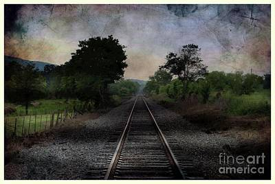 Photograph - Where To Next by Rick Lipscomb