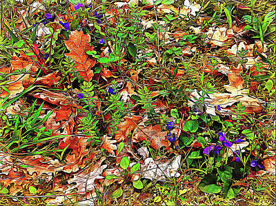 Digital Art - Where Wild Violets Grow by Dorothy Berry-Lound