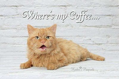 Photograph - Where's My Coffee? by Kimber Butler