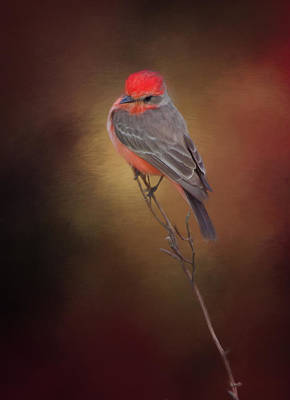 Flycatcher Digital Art - Where's That Bug? by Evelyn Garcia